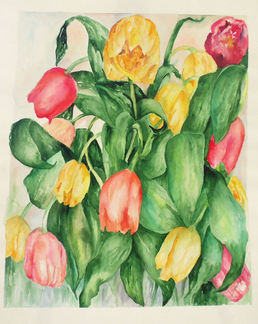 When-Tulips-Sign